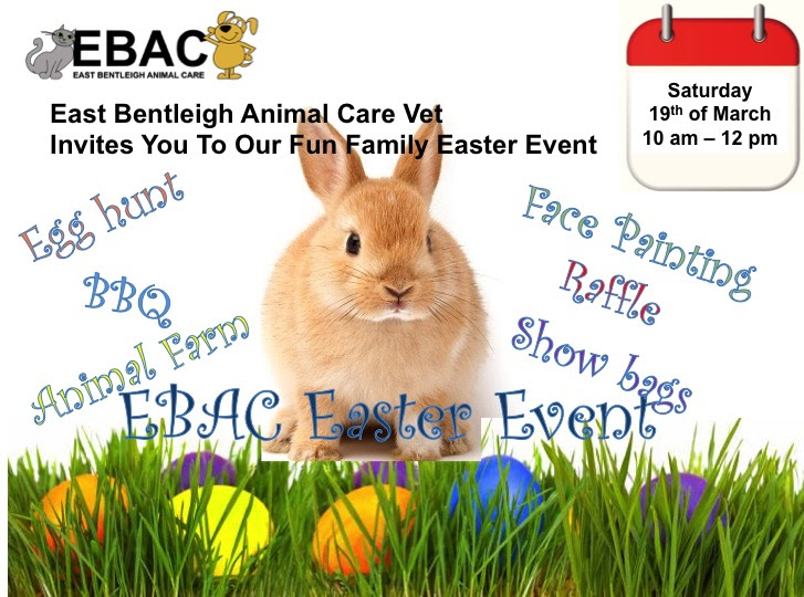 Fun Family Easter Image on 19th march , 10am-12pm