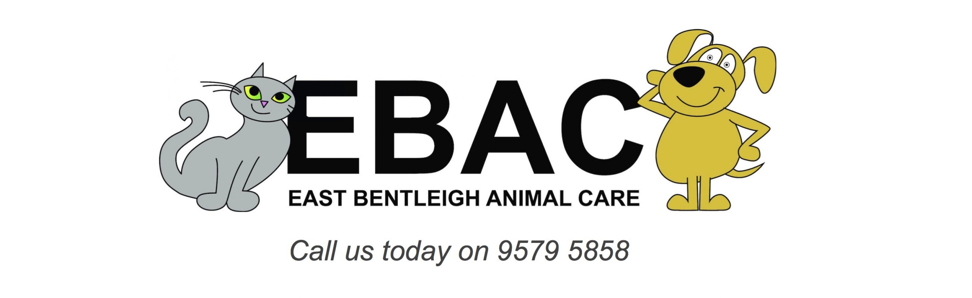 east bentleigh animal care