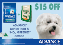 August Dental Month Advance Promotions