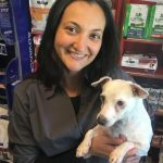 Veterinary Acupuncture at East Bentleigh Vet
